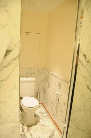 Le Meurice : Toilet in Junior Suite