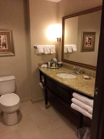 Hilton Dallas/Southlake Town Square : Bathroom