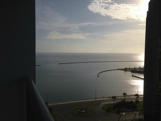 Omni Corpus Christi Hotel: Morning sunset from our room