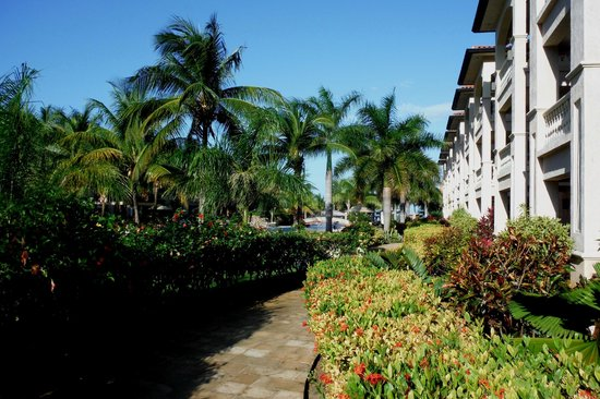 Infinity Bay Spa and Beach Resort : Grounds