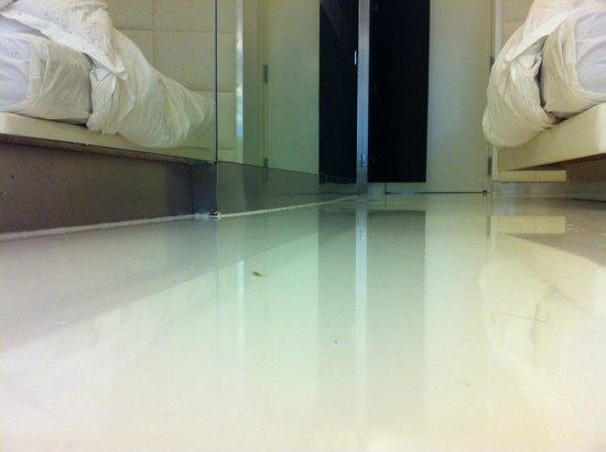 The Mirror Barcelona: Bicho corriendo por el suelo de la habitacíon.