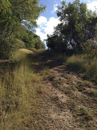 White Bay: walking route to beach
