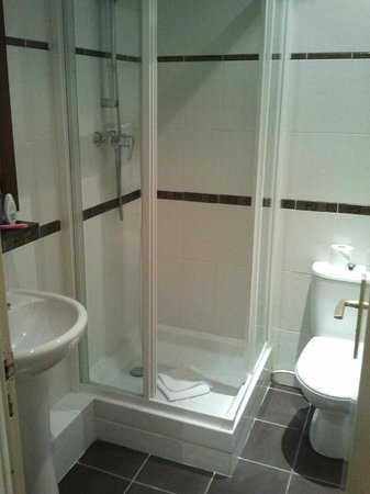 Hotel Palym : Clean little bathroom with great shower