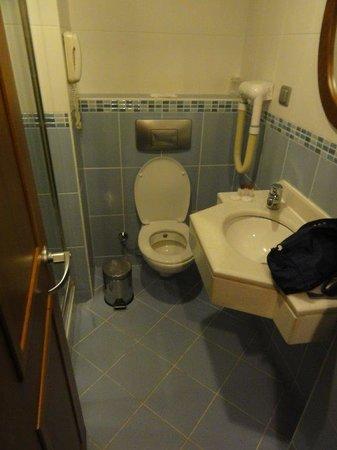 Grand Yavuz Hotel: WC sous évier