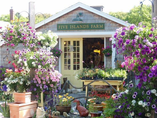 Georgetown, ME: Spring at Five Islands Farm!