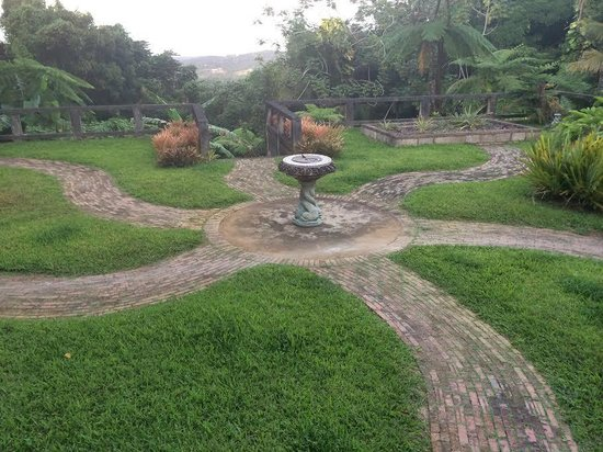 Rainforest Inn: View off back porch, Villa, Ocean in background