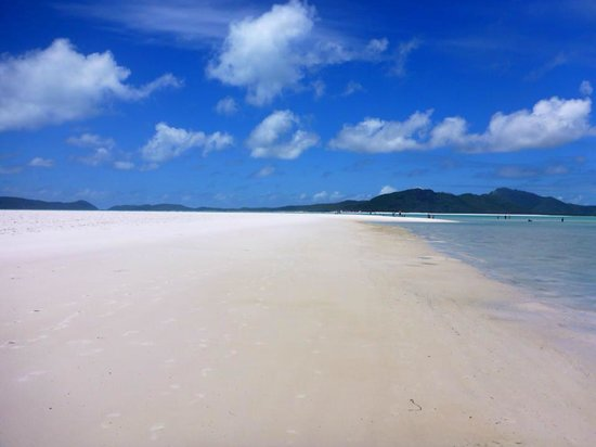 Mantaray Charters: Whitehaven Beach