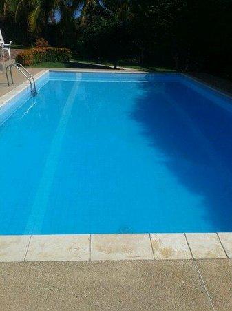 Villa Gaviota : piscina