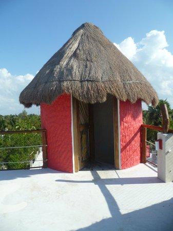 Tribu Hostel: Terrazza sul tetto