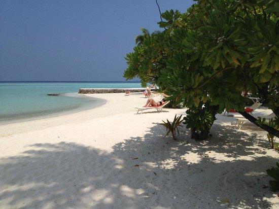 Alimatha Aquatic Resort: spiaggia