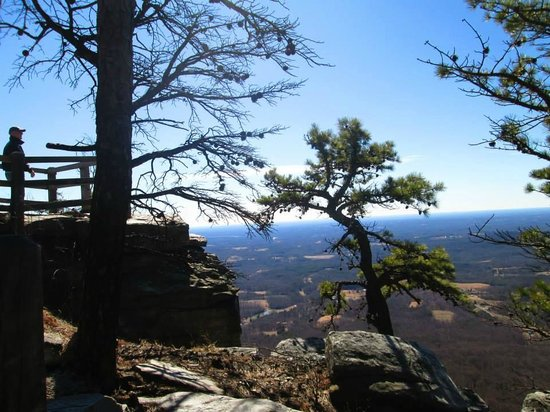 Pilot Knob Inn: View from the top of Pilot Mountain