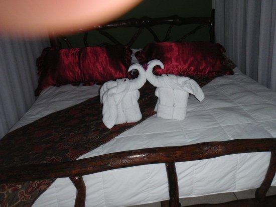 Hotel Mountain Paradise: elephants