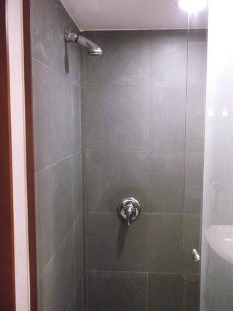 Radisson Blu Hotel, Riyadh: shower