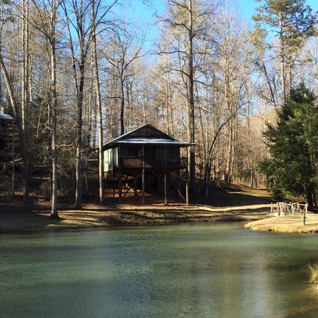Cavender Creek Cabins Resort: Looking at Cabin 8 from across the Lake