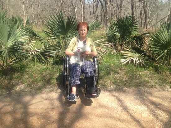 Palmetto State Park : One of the trails.