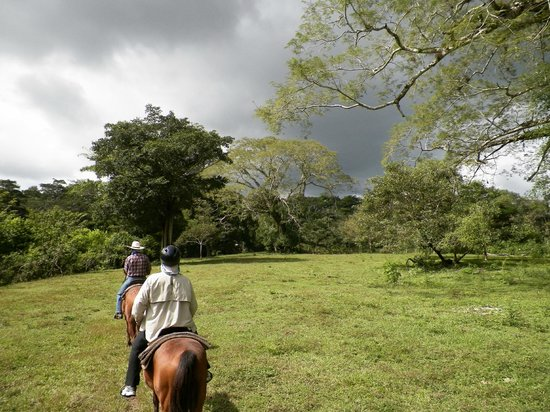 Clarissa Falls Resort : Horseback riding through the fields