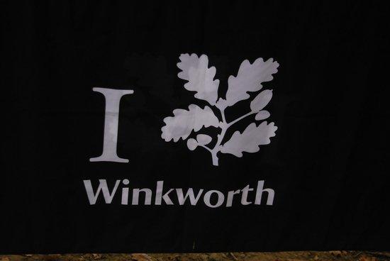Winkworth Arboretum: I Love Winkworth