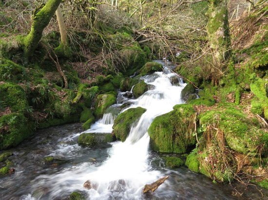 The Old Rectory on the Lake: The waterfall by the disused farm