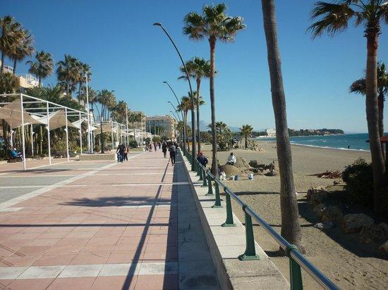 Puerto Deportivo de Estepona: prom2