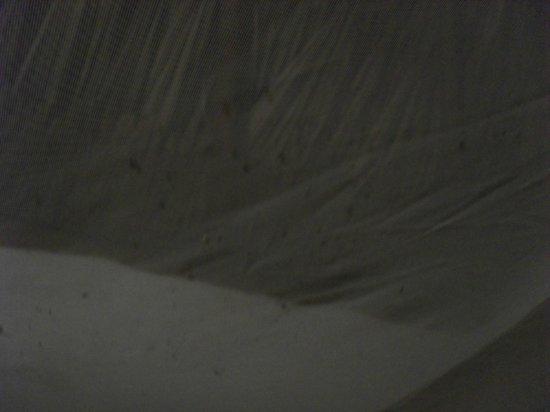 Centro Holistico Akalki: otra foto d ela lujosa habitación