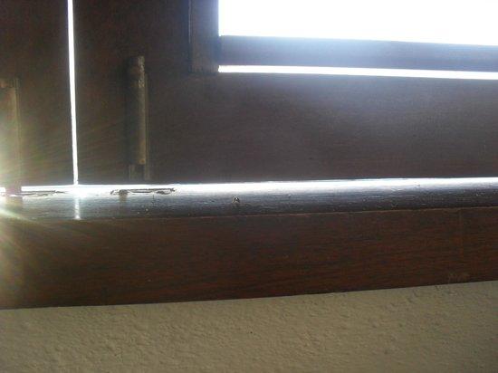 Centro Holistico Akalki: Boquetes en las puertas y ventanas para que los bichos pasen