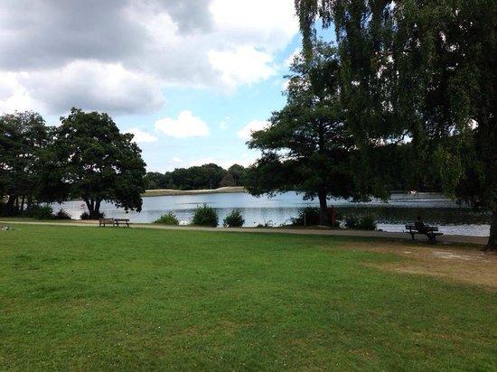 Lake, Tilgate Park