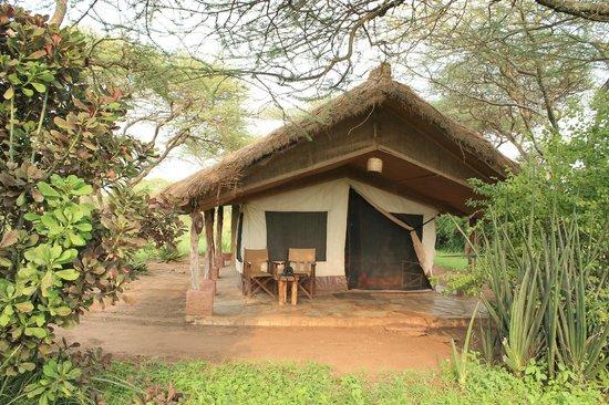 Ikoma Safari Camp: Vores telt