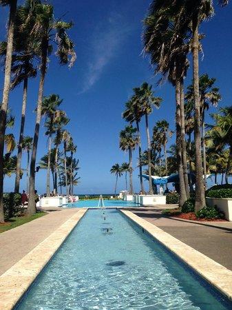 Caribe Hilton San Juan: the pool