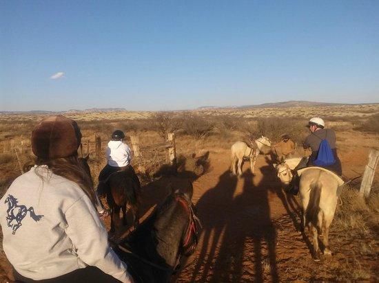 Cowboy Way Adventures : Trail ride in Cottonwood