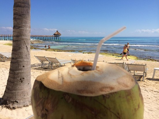 The Grand Mayan Riviera Maya: Coconut water and diet Coke... nice!