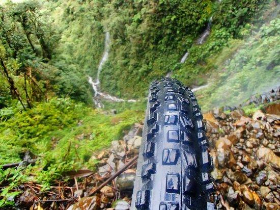 Gravity Assisted Mountain Biking : view