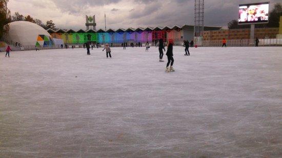 Sokolniki Park: Skating rink
