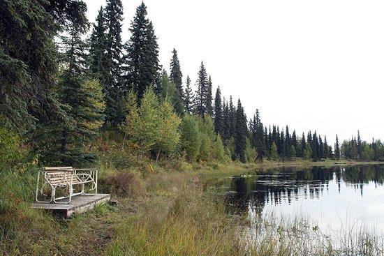 Gate Creek Cabins: Lago na propriedade