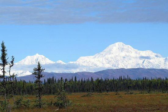 Gate Creek Cabins: Mount McKinley