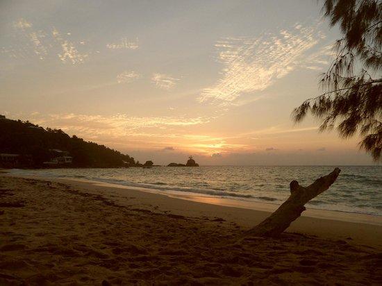 Anse Soleil Beachcomber : Beach
