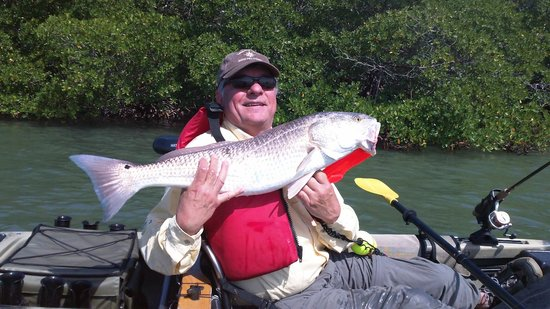 A big 30 inch redfish from estero bay picture of kayak for Estero bay fishing report