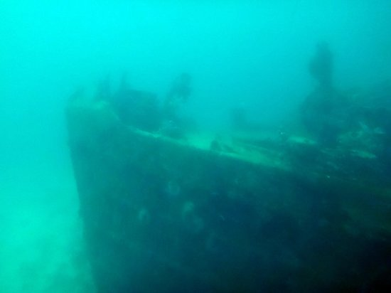 De Palm Tours: Atlantis Submarines Expedition: Barco hundido