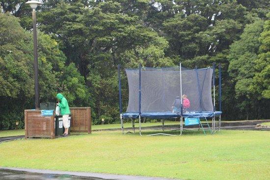 Whangarei TOP 10 Holiday Park : La trampoline et les bacs de recyclage