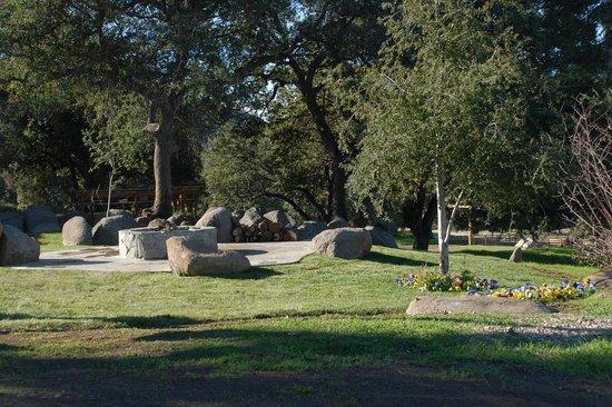 White Oak Wild NIghts: Outdoor lounge area