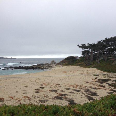 Pine Inn : Beach