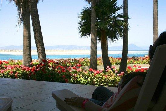 Estero Beach Hotel & Resort: Bahia y Jardines desde la habitacion