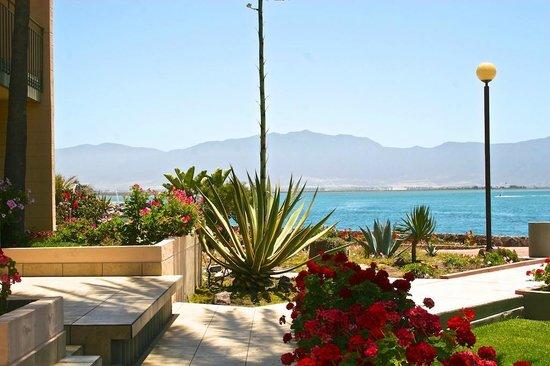 Estero Beach Hotel & Resort : Hermosa vista desde la habitación