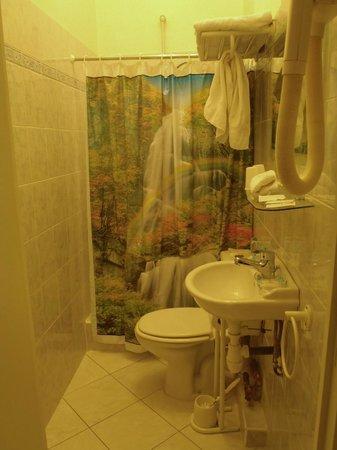 Hotel Le Mas Fleuri : bathroom