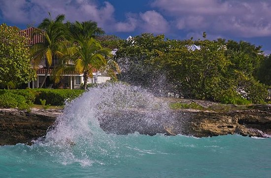 Eldemire's Tropical Island Inn : Smith`s Cove, excellent beach and bathing.