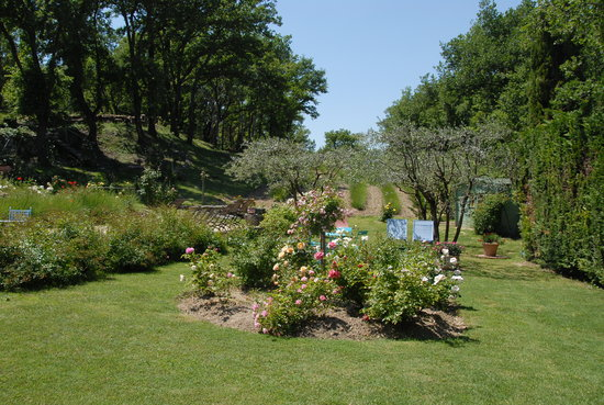 LE PARFUM BLEU : Jardin