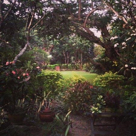 Romyen Garden Resort: Garden