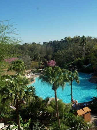Disney's Animal Kingdom Lodge: View from our balcony