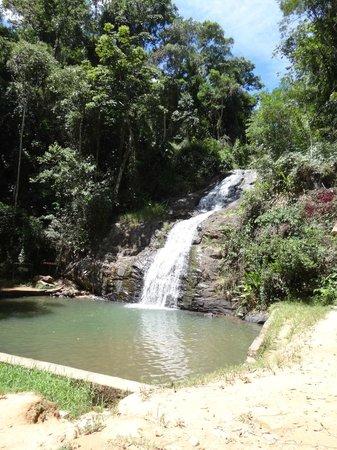 Floresta Nacional de Passa Quatro