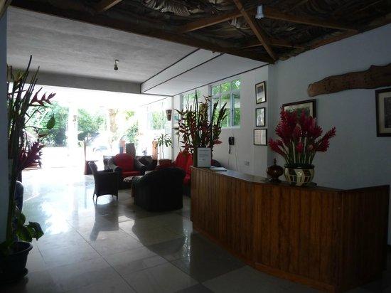 Augerine Guest House: Empfangsbereich