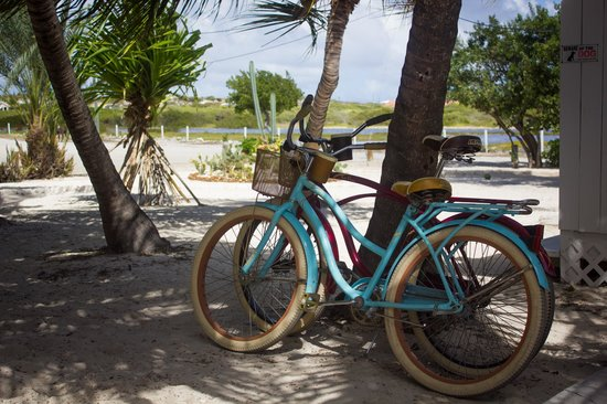 Grand Turk Diving : Our bicycles!